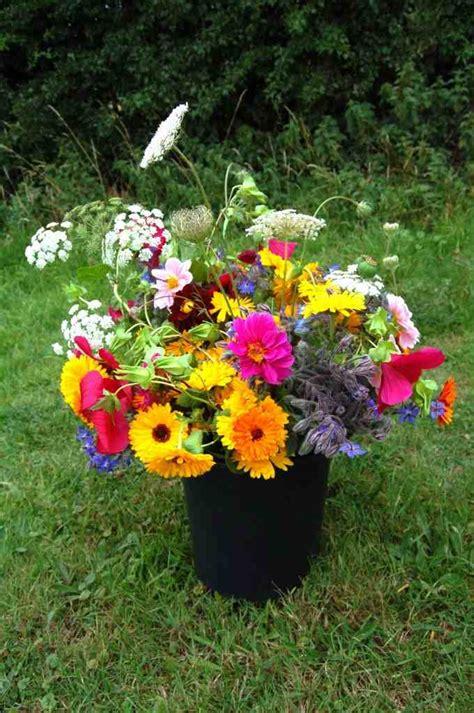 best cut perennial flowers cutting garden top 50 cut