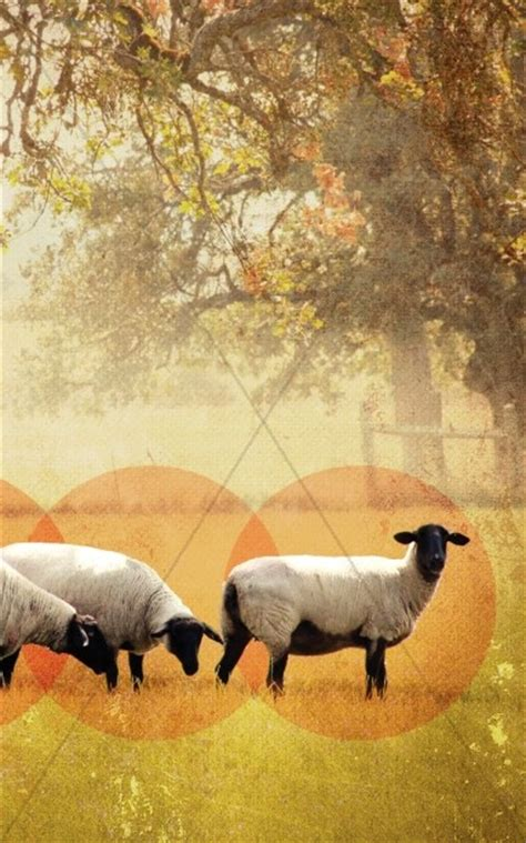 lord   shepherd sermon powerpoint template