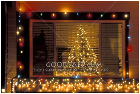tree through a window with lights