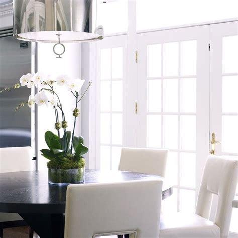 susan brown interior design ideas 17 best ideas about viking refrigerator on
