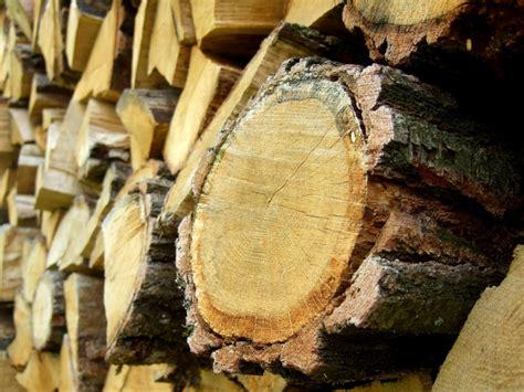 Le En Bois Flotté Bois Wikip 233 Dia