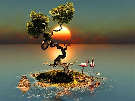 winding tree wallpaper  background image