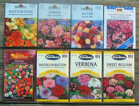 Burpee Flower Seed Packets | www.imgkid.com - The Image ...