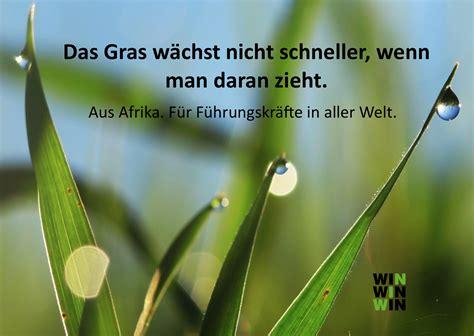 Wie Schnell Wächst Rasen Am Tag by Wie Schnell W 228 Chst Gras Kretschmann Ist Das Ein Unkraut
