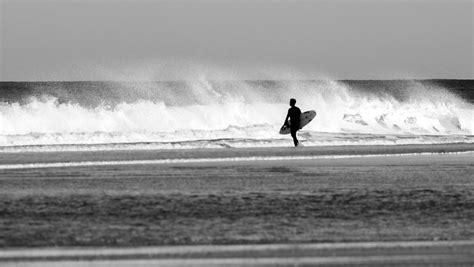 sch駑a chambre de culture ecole de surf à seignosse et surf c hossegor landes