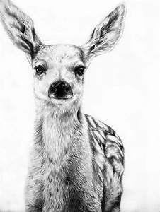 deer art :) | Art | Pinterest | Pets, Deer and Jaguar