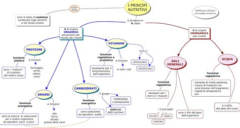 mappa concettuale principi nutritivi mappa concettuale