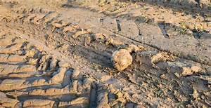 Bauen Auf Lehmboden : fundament auf lehmboden wie ist das m glich ~ Markanthonyermac.com Haus und Dekorationen