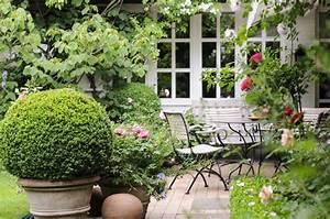 Sträucher Für Garten : winterharte pflanzen tipps im meister meister blog ~ Buech-reservation.com Haus und Dekorationen