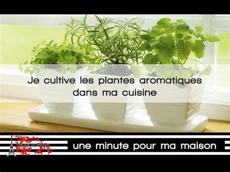 plantes aromatiques cuisine des plantes aromatiques dans ma cuisine