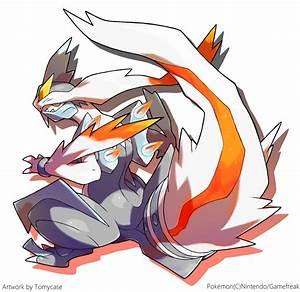 Pokemon Kyurem Wallpaper Images   Pokemon Images