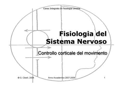 dispense anatomia umana fisiologia umana ii controllo corticale movimento