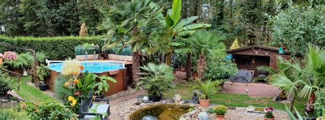Pflanzen Garten Dinslaken by Palmenoase In Dinslaken If You Think About Palm Trees
