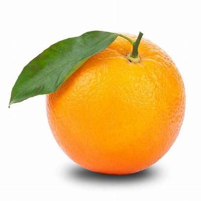 Orange Transparent Clipart