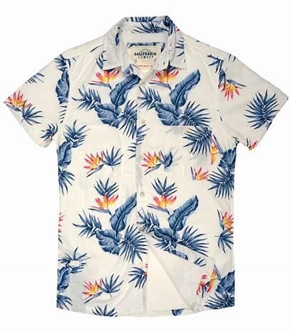 Clipart Shirt Aloha Shirts Hawaiian Transparent Friday