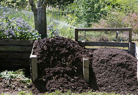 Kompost anlegen in 5 Schritten  OBI Ratgeber