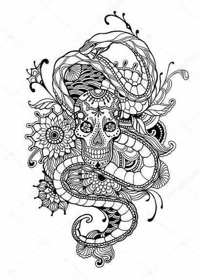 Coloring Snake Skull Adult Tattoo Flowers Illustration