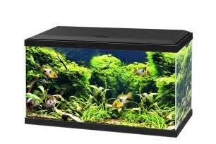 aqua 60 ciano aquarium