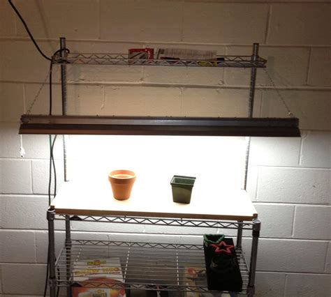 grow light setup helping your garden grow with diy lights will bike for