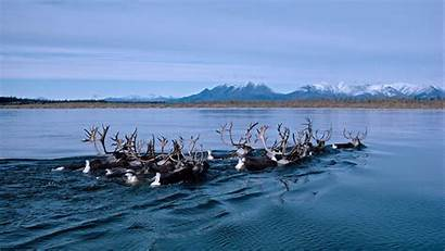 Peapix Emerald National Park Canada