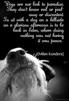 dog quotes  poems images   animal