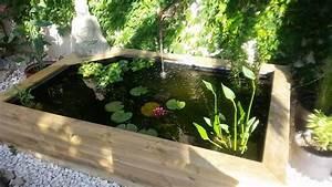 Bassin De Jardin Pour Poisson : poisson pour bassin de jardin top decoration bassin ~ Premium-room.com Idées de Décoration