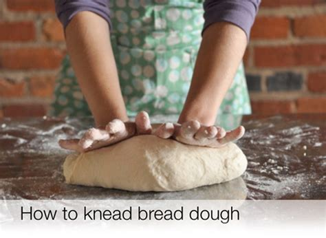 how to make dough how to knead bread dough the video the kitchn