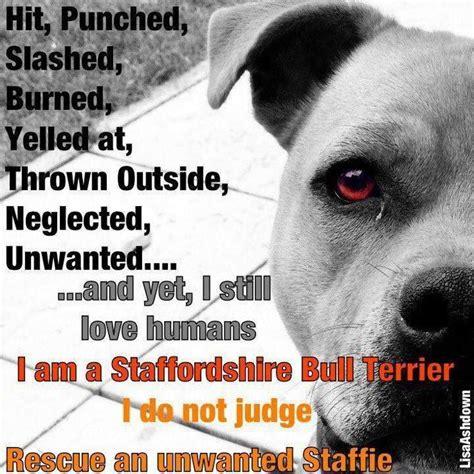 sad dog abuse quotes quotesgram