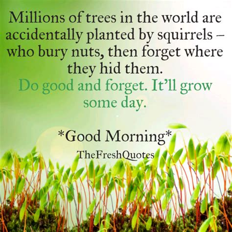 75 Beautiful Morning Quotes And Wishes 75 Beautiful Morning Quotes Wishes Quotes