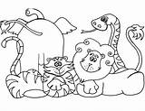 Coloring Pages Wild Animals Animal Zoo sketch template