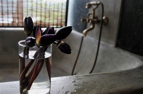 Lai spīd un laistās - vienkārši veidi, kā iztīrīt vannas ...