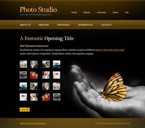 photo gallery web template  art photography