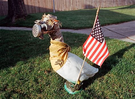 Goose wearing a gas mask, Elwood, IN | Kay Westhues