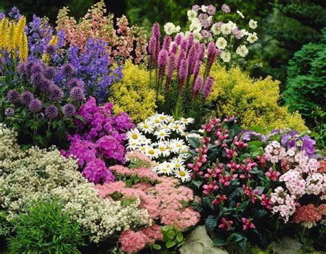macam macam tanaman hortikultura bibitbungacom