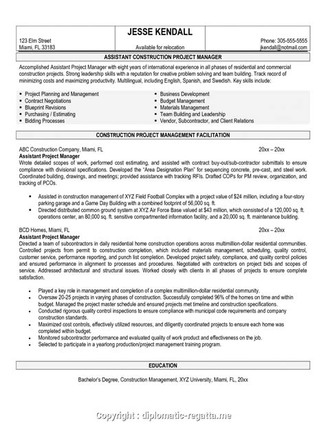 Construction Project Manager Resume by New It Manager Resume Title Construction Project