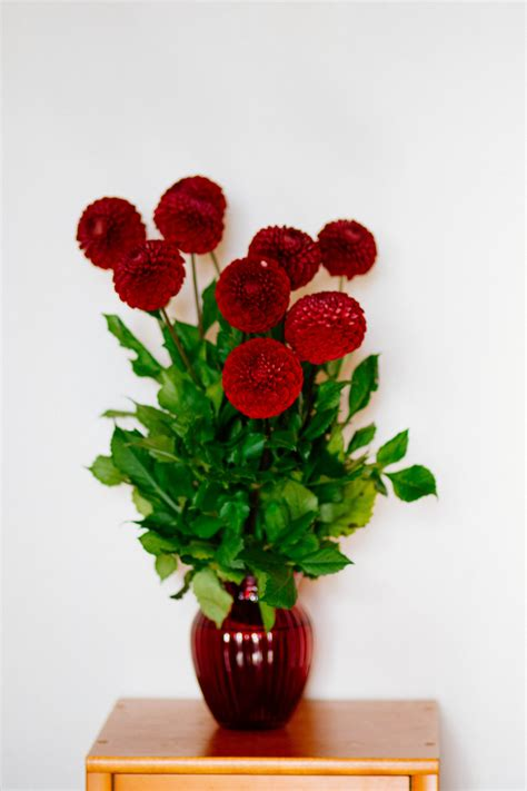 Flowers For Vase by Free Photo Flower Vase Vase Flowers Flora Free