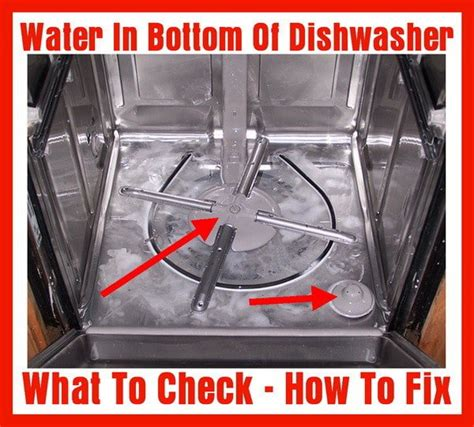 Garbage Disposal Leaking From Bottom Plate by Water In Bottom Of Dishwasher How To Fix Us3