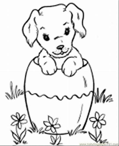 Coloring Pages Dog Dogs Printable Pet Chihuahua