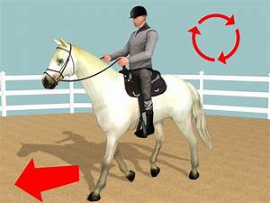 How to Make a Horse Move Forward: 5 Steps (with Pictures)
