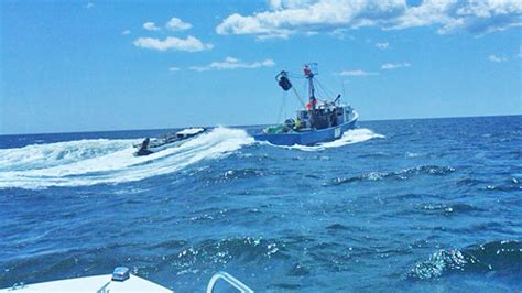 Ebay Commercial Fishing Boats For Sale by Commercial Saltwater Fishing Boats For Sale Ebay Boat
