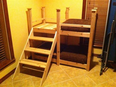 build  bunk bed   pets diy projects