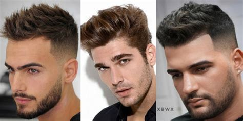 hairstyles haircuts   face shape male