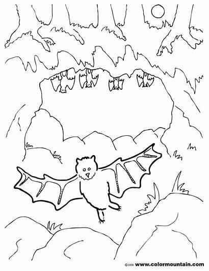 Cave Coloring Clipart Bat Cartoon Preschool Bats