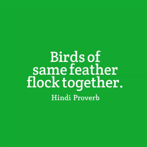 Birds Of The Same Feather Funny Quotes