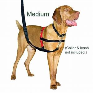 Buy Halti Harness No Pull Harness, Multi functional and ...