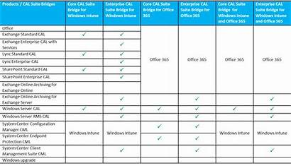 Microsoft Cal Suite Client Table Services Managing
