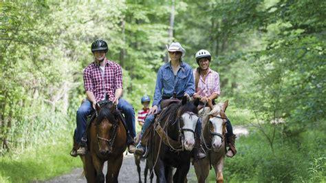 riding horseback mountain creek near trails bike