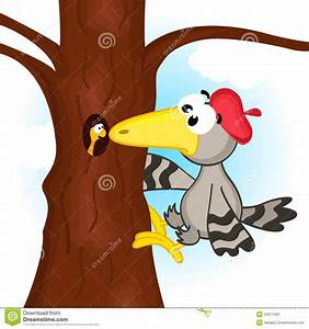 Woodpecker On Tree Stock Vector - Image: 42311093