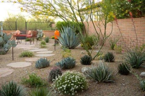 backyard desert landscaping desert landscaping