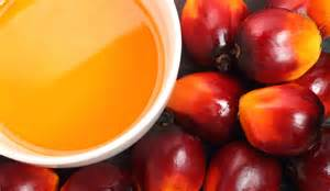 What Is Palm Oil Pictures